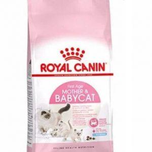 غذای خشک گربه رویال کنین مدل Mother And Babycat وزن 2 کیلوگرم