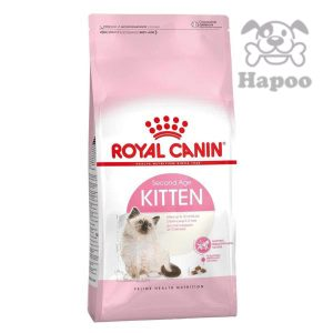 غذای خشک گربه رویال کنین مدل کیتن وزن ۴ کیلوگرم